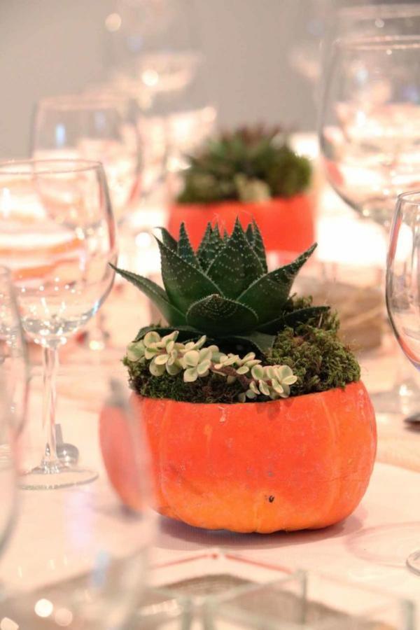 Thanksgiving : la citrouille à l'honneur 3