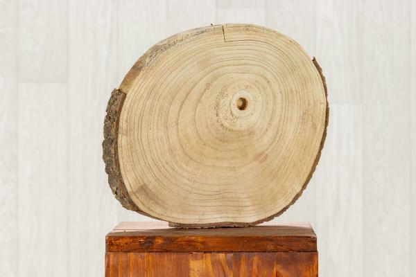 Rondelle de bois 1