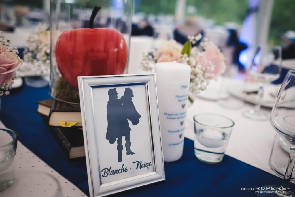 mariage_bretagne_magie_disney_centre_table_7